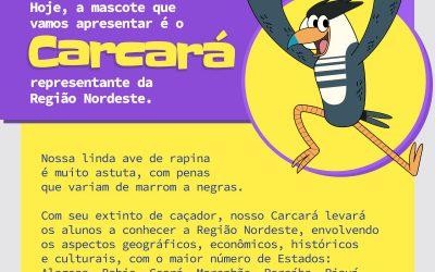 BRASIL POR TODOS OS CANTOS!!!